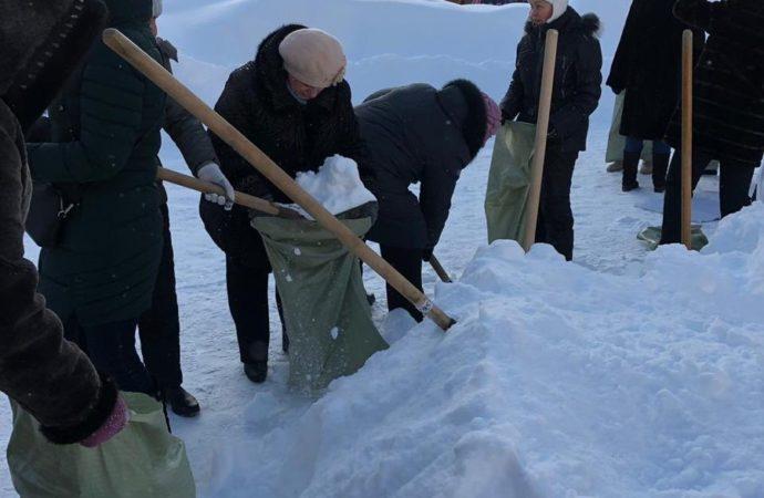 В Саратове учителя в 20-градусный мороз собирают снег в мешки