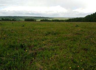 Суд отменил договор на безвозмездное использование более 12 гектар земли