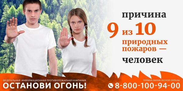 Саратовская область присоединяется к Федеральной информационной противопожарной кампании «Останови огонь!» сезона 2019 года