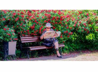 Федеральную социальную доплату к пенсии получают более 92 тысяч пенсионеров области