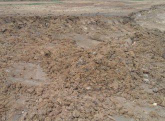 Управление Россельхознадзора по Саратовской области приняло меры по возмещению вреда окружающей среде по факту загрязнения земель