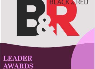 """Номинант премии """"Лидер года 2020"""" Студия Профессионалов """"B&R"""""""
