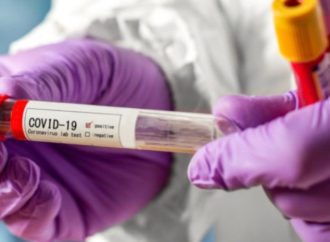 Россельхознадзор создаст вакцину от COVID-19 для домашних животных