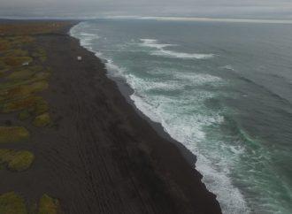 Океан на Камчатке отравлен