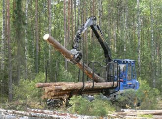 В Кировской области к концу года планируется построить завод по переработке древесины